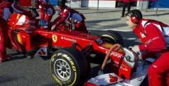Fernando Alonso en los test de Jerez/ lainformacion.com/ EFE