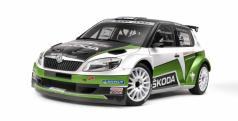 Skoda Fabia S2000 de 2012